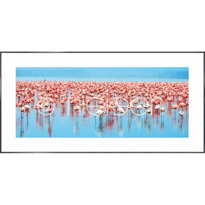 """Obramowany obraz """"Flamingos"""" z ramą aluminiową Alpha"""
