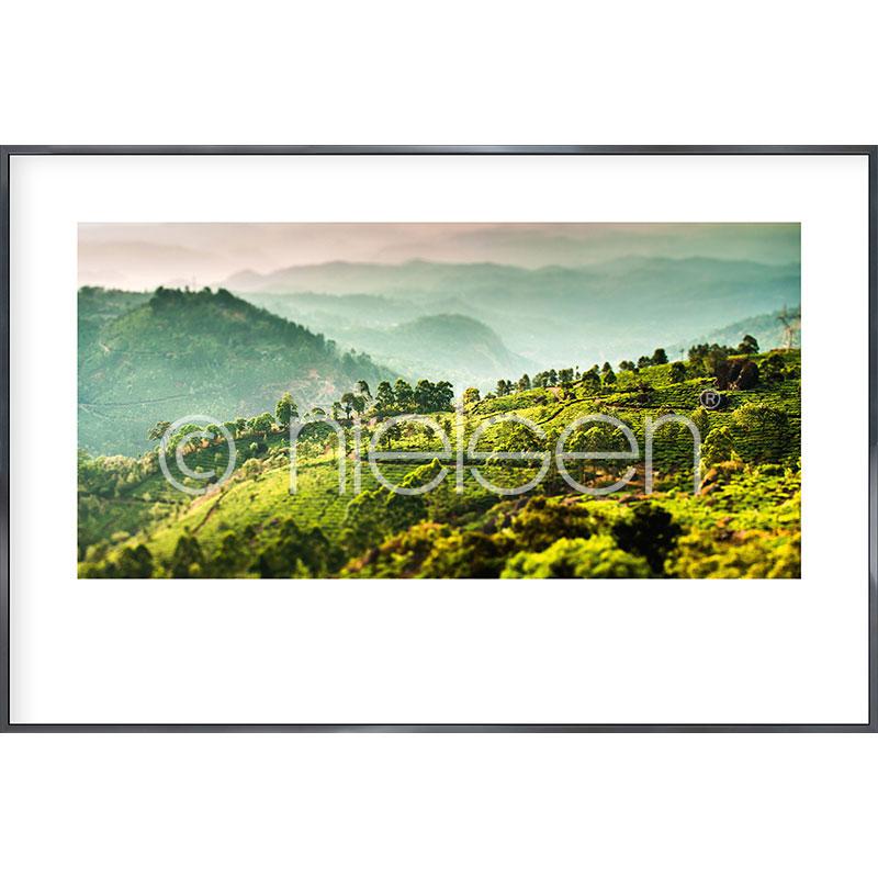 """Obramowany obraz """"Landscape of Tea Plantations"""" z ramą aluminiową Alpha"""