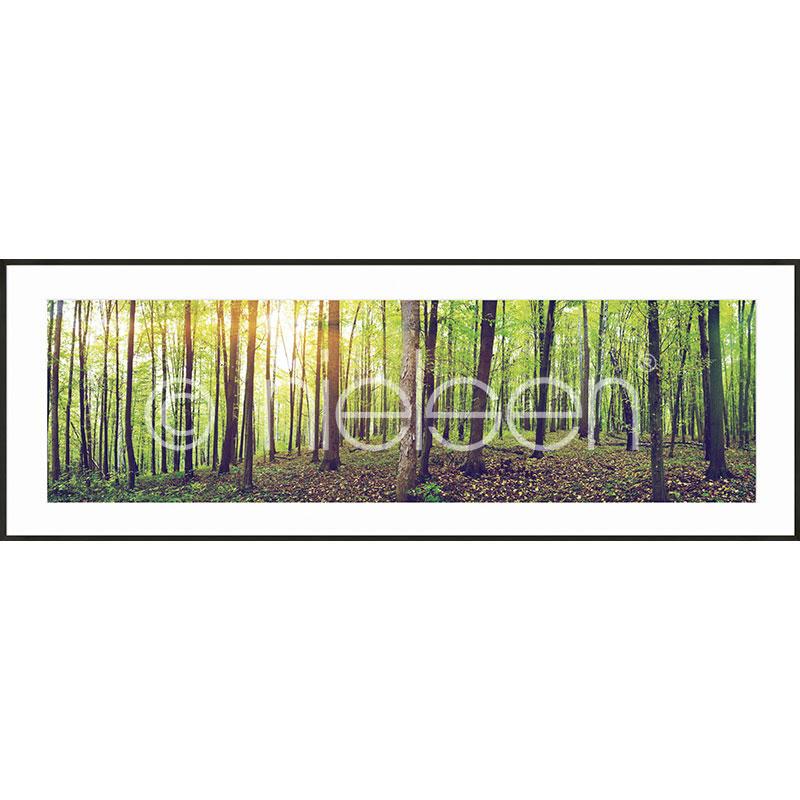 """Obramowany obraz """"Forest"""" z ramą aluminiową C2"""